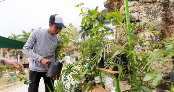 Yucatán en la lucha contra el cambio climático